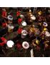 Percusión Brasileña y de Mano