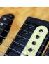 Cápsulas Guitarras