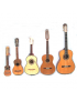 Cuerdas Instrumentos Latinos