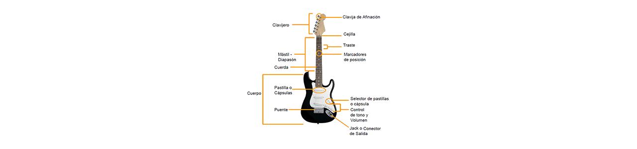 Partes y Piezas Guitarras